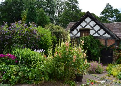 mill_house_in_bloom3